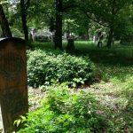 Grab von Sofie Menter (Pianistin/Komponistin), Alter Südfriedhof München, Zustand 2014 © Susanne Wosnitzka