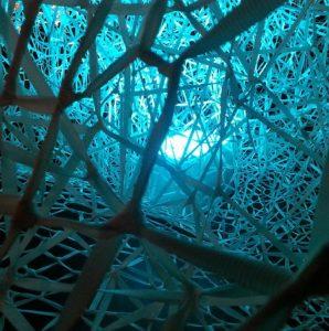 Packend: Netzwerke © Susanne Wosnitzka